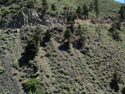 Photo of an ATV crash site